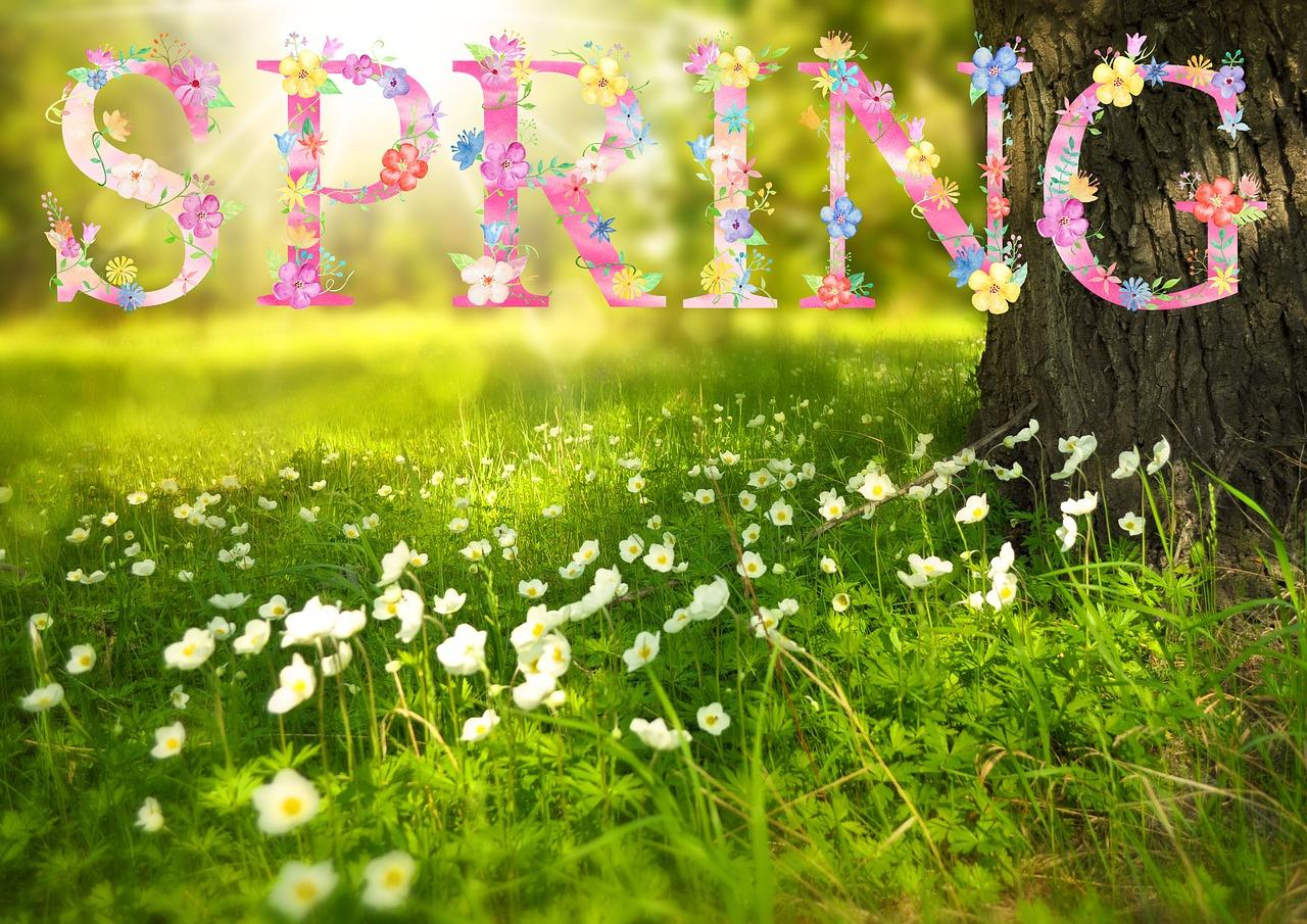 Spring is in the Air!  Streamline Landscaping