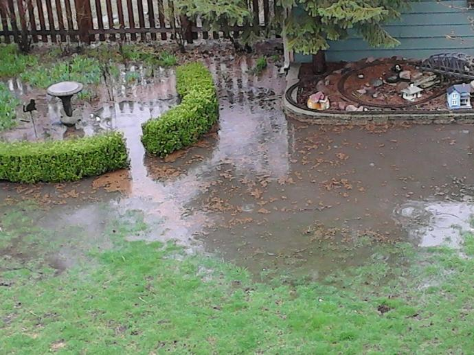 Fix Standing Water Issues Today Streamline Landscaping